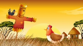 A chicken with a scarecrow and a black bird at the field Royalty Free Stock Photos