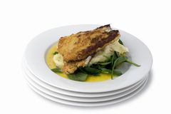 Chicken schnitzel; with clipping path Stock Photo