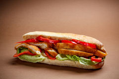 Chicken schnitzel sandwich Royalty Free Stock Image