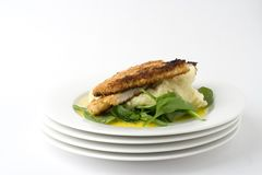 Chicken schnitzel; wide, top space Stock Photo