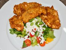 Chicken schnitzels with salad Stock Images