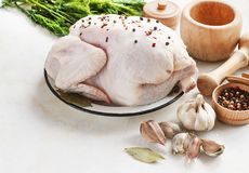 Chicken with seasonings on a light background Royalty Free Stock Photos