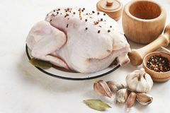 Chicken with seasonings on a light background Stock Photos
