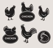 Chicken set. Vector. Animal, meat, stamp Royalty Free Stock Photography