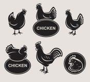 Chicken set. Vector. Animal, meat, stamp stock illustration
