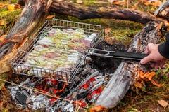 Chicken shashlik Stock Photos