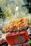 Chicken shashlik on grill Stock Image