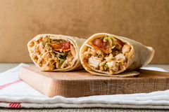 Chicken shawarma durum doner kebab copy space. Stock Image