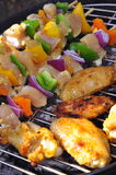 Chicken shish kebab and Chicken wings. Chicken shish kebab and wings on the grill Royalty Free Stock Image