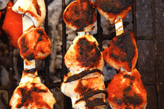 Chicken shish kebab cooked on barbecue Stock Photography