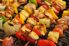 Chicken shish kebab. Fresh chicken shish kebab with vegetables on the grill Stock Image