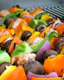 Chicken Shish Kebobs. Fresh grilled chicken shish kebobs (kebabs) on skewers with mushrooms, peppers and onions. Shallow dof, with focus on chicken and veggies Stock Photography