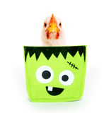 Chicken sitting inside Halloween decoration Stock Photography