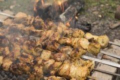 Chicken Skewer Kebab Stock Photos