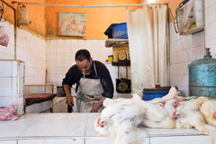 Chicken slaughtering at Marrakesh market Stock Photography