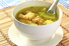 Chicken soup. Royalty Free Stock Photography