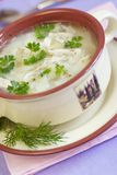Chicken Soup. Soup with potato rice and slices of chicken Stock Photography
