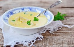 Chicken soup Royalty Free Stock Photos