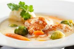 Chicken Soup Royalty Free Stock Photos