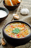 Chicken soup with cabbage royalty free stock photos