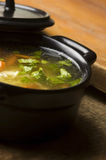 Chicken soup in the ceramic bowl Stock Image