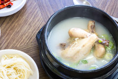 Chicken soup with ginseng Stock Images