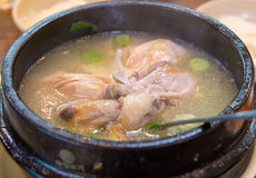 Chicken soup with ginseng, korean food Royalty Free Stock Photo