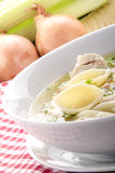 Chicken soup with home made noodle Stock Photos