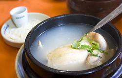 Chicken soup. With koren ginseng and sticky rice Royalty Free Stock Photo