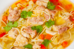 Chicken soup with noodle and vegetables Stock Photography