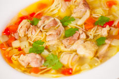 Chicken soup with noodle and vegetables Royalty Free Stock Photography