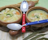 Chicken soup with potatoes. Some fresh chicken soup with potatoes royalty free stock photos