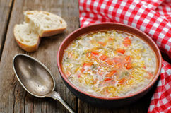 Chicken soup with rice and peppers Royalty Free Stock Image