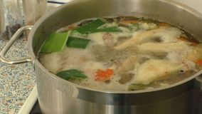 Chicken soup on the stove stock video footage