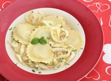 Chicken soup with tortellini. Some chicken soup with tortellini and fennel Royalty Free Stock Image