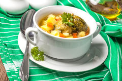 Chicken soup with vegetables. Royalty Free Stock Photos