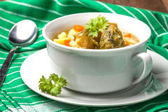 Chicken soup with vegetables. Royalty Free Stock Image
