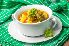 Chicken soup with vegetables. Stock Photos