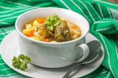 Chicken soup with vegetables. Royalty Free Stock Images