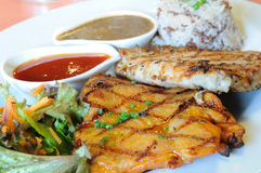 Chicken spicy and pock grilled with sauces and brown rice. Stock Photography