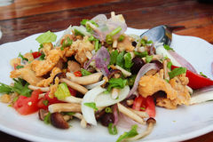 Thai Chicken Sour Salad Stock Images