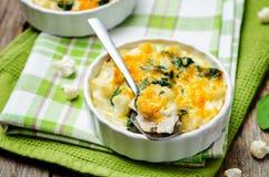 Chicken Spinach Cauliflower casserole Royalty Free Stock Photos
