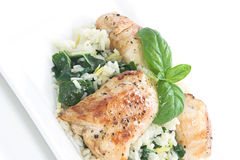 Chicken & Spinach dish # 1. Chicken and rice with spinach and lemon toped with basil leaves Royalty Free Stock Photos