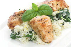 Chicken & Spinach dish # 5. Chicken and rice with spinach and lemon toped with basil leaves Stock Image