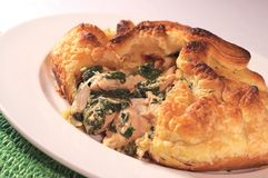 Chicken and Spinach Pie. Baked Chicken and Spinach Pie Royalty Free Stock Images