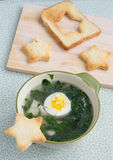 Chicken spinach soup Royalty Free Stock Photo