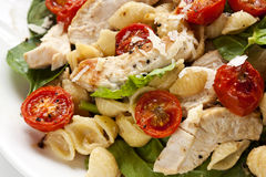 Chicken, Spinach and Tomato Pasta. Creamy chicken and spinach pasta, with roasted cherry tomatoes and shaved parmesan.  Delicious healthy eating Stock Image