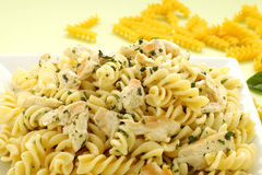 Chicken Spiral Pasta Royalty Free Stock Images
