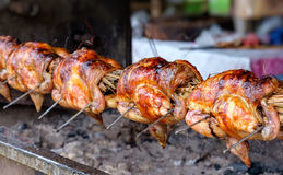 Chicken on the spit Royalty Free Stock Photo