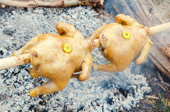 Chicken on a spit. Traditional preparation of chicken on a spit Stock Photography